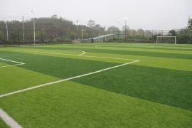攸州公园社会足球场